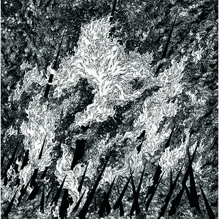 TURIA / VILKACIS - split, LP