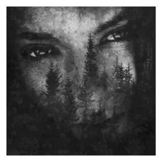 LUSTRE – The Ashes of Light, CD