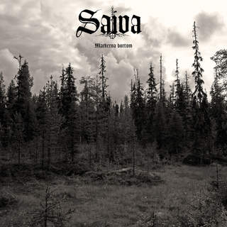 SAIVA - Markerna bortom, LP